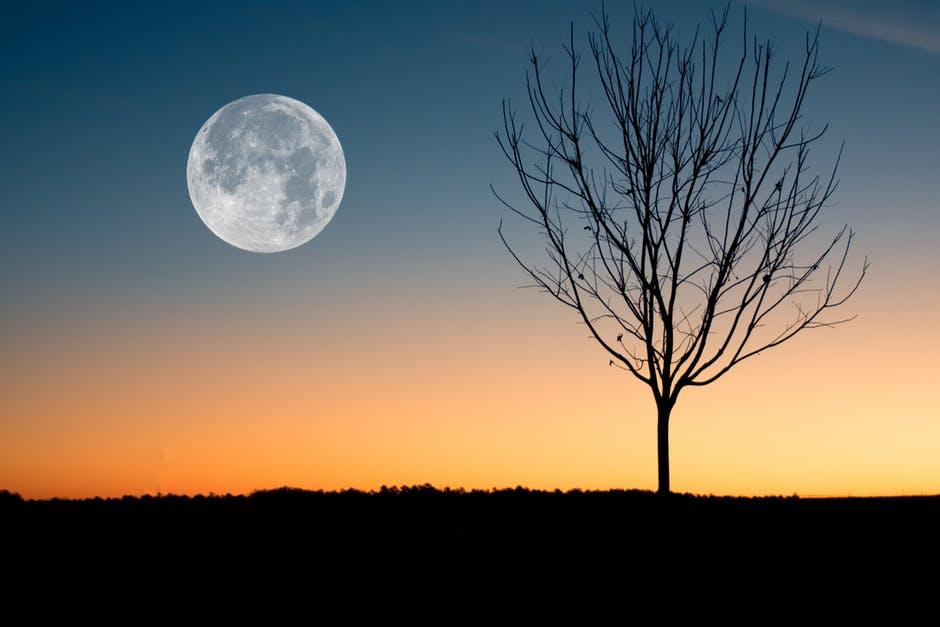 mėnulio prekybos sistema