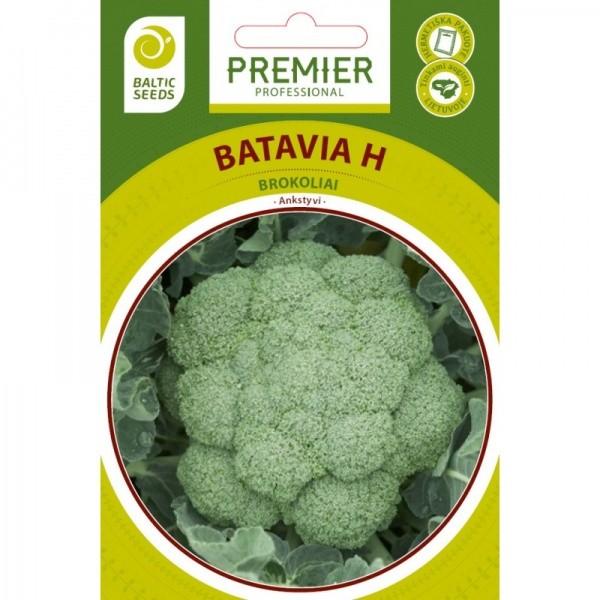 Brokoliai Batavia H