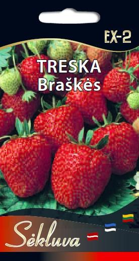 Braškės Treska EX-2