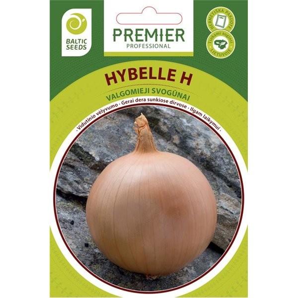Svogūnai Hybelle H