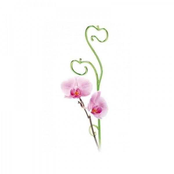 Orchidėjoms atrama (įvairių spalvų)