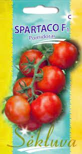 Pomidorai Spartaco (C grupė)