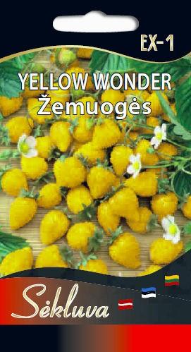 Žemuogės Yellow Wonder EX-1